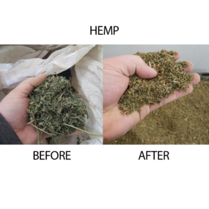 Hemp Before and After Shredding